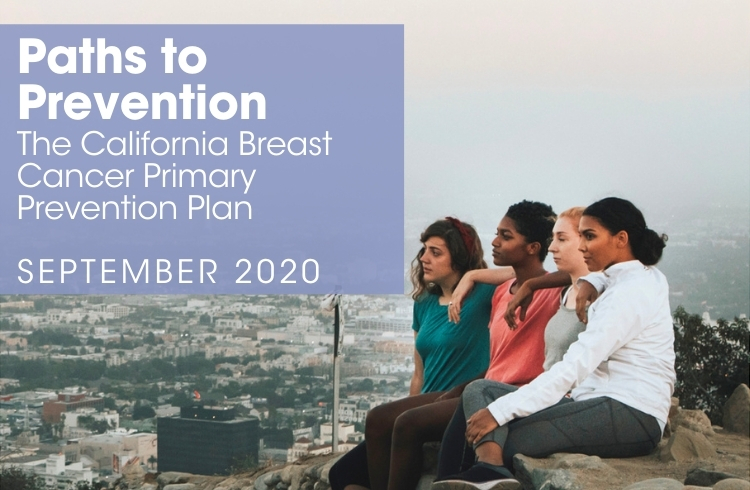 BCPP PATHS TO PREVENTION_publications_CA breast cancer primary prevention plan
